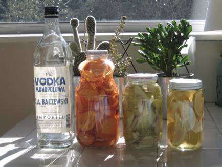 Infused Vodkas