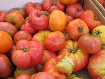Wintertime Tomato Sauce